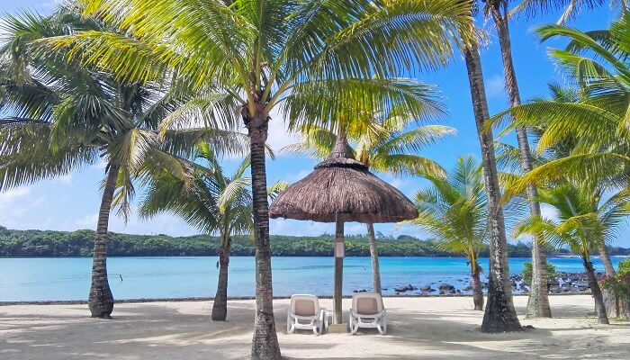 Romantisk strand med palmer.